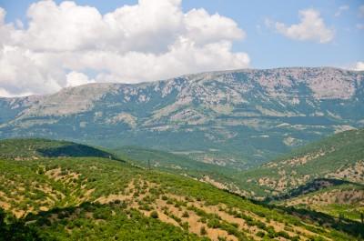 Фото: зеленые холмы